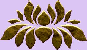 Strange Lotus Eaters
